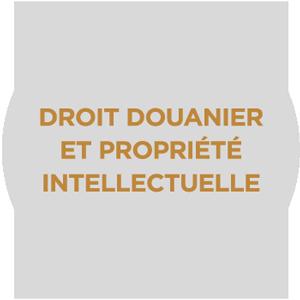 arenaire-cabinet-avocats-references-droits-douanier-propriete-intellectuelle